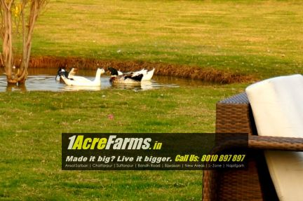 1 acre farm house delhi