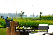 1 acre farm house L Zone Delhi