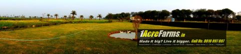 1 acre farm jhatikra